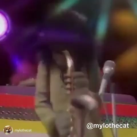 """Ummm, a tidbit. Ummm, a smidgen..."" repost via from @mylothecat Kermit the Frog and Rowlf the Dog as Q-Tip and Phife Dawg, rapping the A Tribe Called Quest classic, ""Check the Rhime"". RIP Phife. Big shout to @atcq @qtiptheabstract @iamthephifer @alishaheed @jarobiwhite . This is another from #beforeyouwerefollowingme and one of my personal favorites. Be here Monday for a full week of classics from the legendary Roots crew! Keep the non-garbage requests coming in the comments, and I'll try to make them happen... #atribecalledquest #atcq #90shiphop #classichiphop"